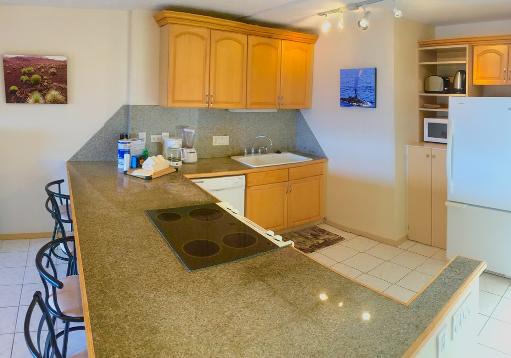 MauiFewo.com - Kahana Villas E613 - Toller Meerblick, günstig, ideal ...